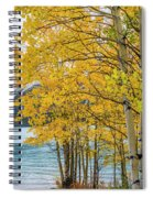 Abraham Lake Spiral Notebook