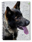 Absolute Loyalty Spiral Notebook