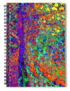 Abstract Visions I Spiral Notebook