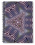 Abstract Zebra Design Spiral Notebook