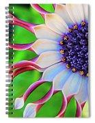 African Daisy Spiral Notebook