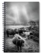 After The Rain On The Mountain In Black And White Spiral Notebook