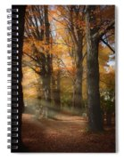 Afternoon Light In Fall Colors Of New England Spiral Notebook