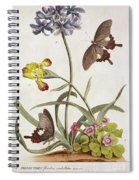 Agapanthus Africanus, Iris Variegata And A Species Of Oxalis Spiral Notebook
