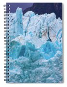 Alaskan Blue Spiral Notebook