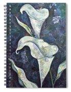Alcatraz II Spiral Notebook