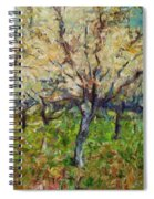 Almond Orchard Spiral Notebook