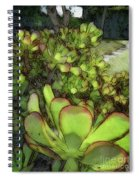 Aloe Succulent Spiral Notebook