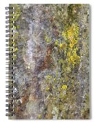 Along The Trail 3 Spiral Notebook
