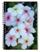 Alpine Rockjasmine Up Close Spiral Notebook