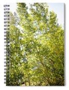 Alpine Sunlight In The Rockies Spiral Notebook