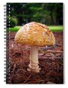 Amanita Fungus Spiral Notebook