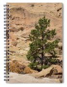 Amazing Life On The Sandstone Cliffs Spiral Notebook