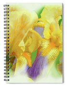 Amenti Yellow Iris Flowers Spiral Notebook