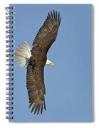American Bald Eagle In Flight IIi Spiral Notebook