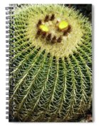 American Beauty Spiral Notebook