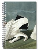 American Ptarmigan, Tetrao Mutus, White Tailed Grous, Tetrao Leucurus Spiral Notebook