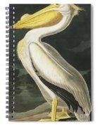 American White Pelican, Pelecanus Erythrorhynchos By Audubon Spiral Notebook