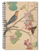An Orange Headed Ground Thrush And A Moth On A Purple Ebony Orchid Branch, 1778 Spiral Notebook