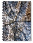 Annual Rings Spiral Notebook