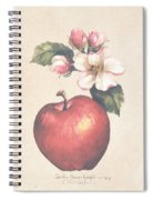 Apple And Blossoms Spiral Notebook