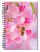 Apple Blossom 2 Spiral Notebook