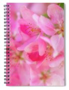 Apple Blossom 5 Spiral Notebook