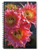 Argentine Giant Pink Trio Spiral Notebook