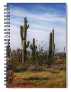 Arizona Dreaming Spiral Notebook