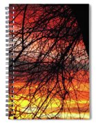 Arizona Sunset Through Branches Spiral Notebook