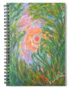 Around The Sun Spiral Notebook