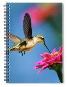 Art Of Hummingbird Flight Spiral Notebook
