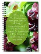 Chocolate Divine - Verse Spiral Notebook