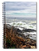 Blustry Passion Spiral Notebook
