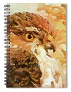 Prince Of The Skies Spiral Notebook