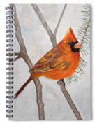 Fire On Ice Spiral Notebook