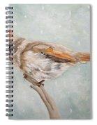 Snow Flurry Spiral Notebook