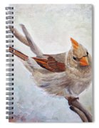 Red Bill Beauty Spiral Notebook