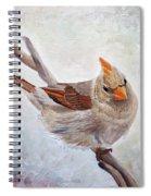 Red Bill Beauty Spiral Notebook