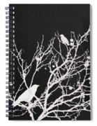 Raven - White Over Black Spiral Notebook