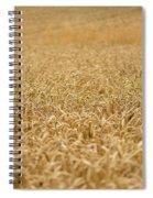 A Field Of Wheat Spiral Notebook