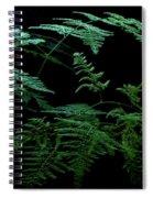 Asparagus Fern Spiral Notebook