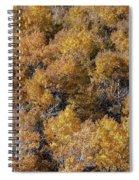 Aspen Autumn Leaves Spiral Notebook