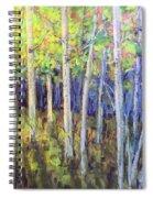 Aspen IIi Spiral Notebook