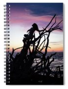Athena Spiral Notebook