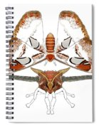 Atlas Moth2 Spiral Notebook