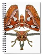 Atlas Moth7 Spiral Notebook