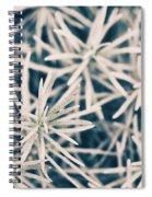 Atonal Spiral Notebook