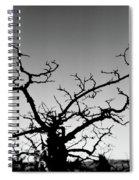 Atop Starved Rock Spiral Notebook