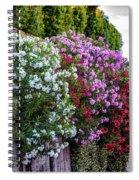 Aurelian Wall Spiral Notebook